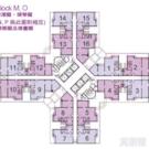 天頌苑 頌澤閣 (M座) 高層 14室 天水圍
