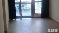GRAND AUSTIN 2A座 低層 B室 九龍站/尖沙咀/佐敦