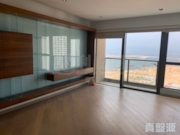 THE VISIONARY Tower 1 Very High Floor Zone Flat B Tung Chung