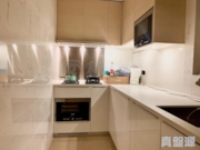 THE PARKSIDE Tower 2 Very High Floor Zone Flat D Tseung Kwan O