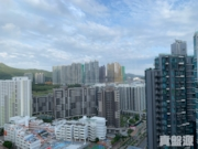 THE PARKSIDE Tower 3 Very High Floor Zone Flat A Tseung Kwan O