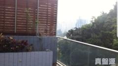 縉庭山 3座 低層 B室 荃灣
